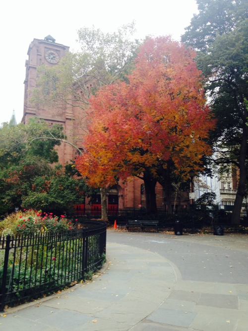 New York in Autum by Kim Parker